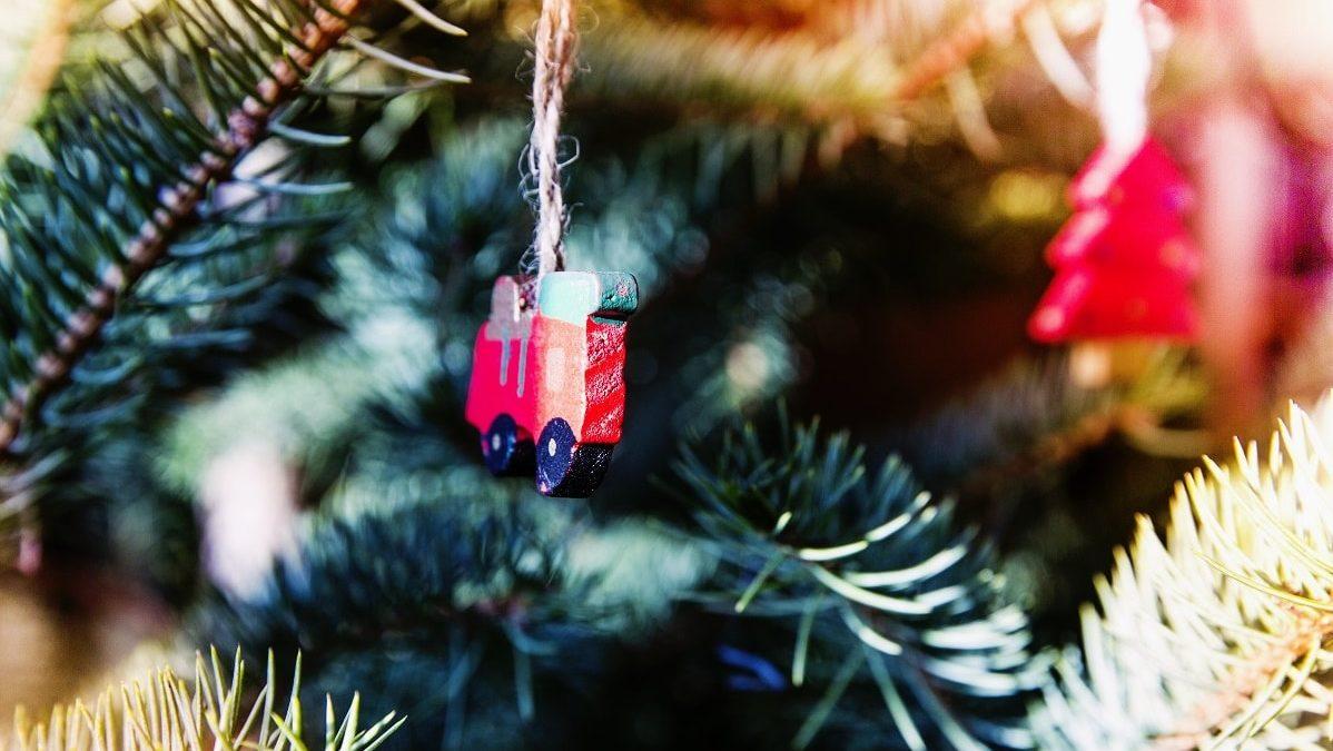 Экологичный Новый год: как провести праздник без вреда для природы
